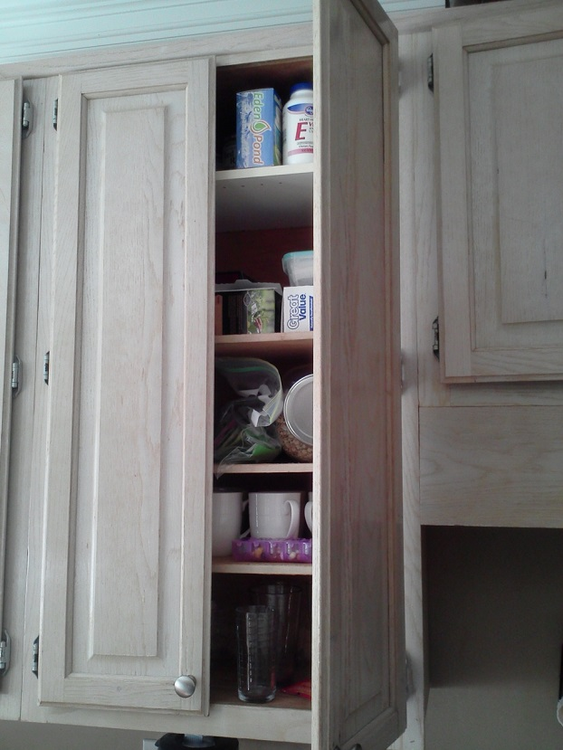 Open Cabinet Kitchen 3